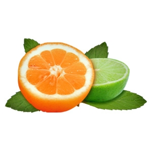 Picture of Citrus Mint