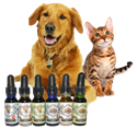 Picture for category Pet CBD
